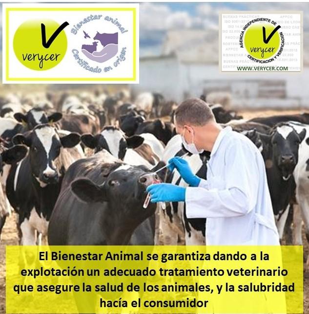 imagen de la noticia: CANTABRIA - Ayudas para financiar el coste del veterinario en las explotaciones ganaderas-2019
